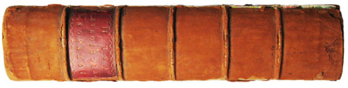 Samuel Johnson Dictionary spine
